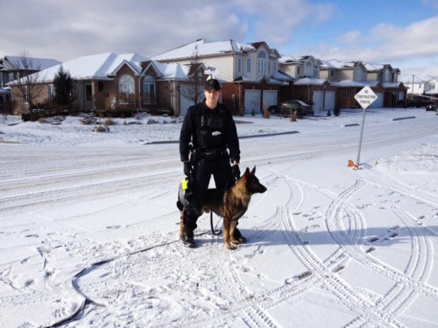 Police dog Guelph