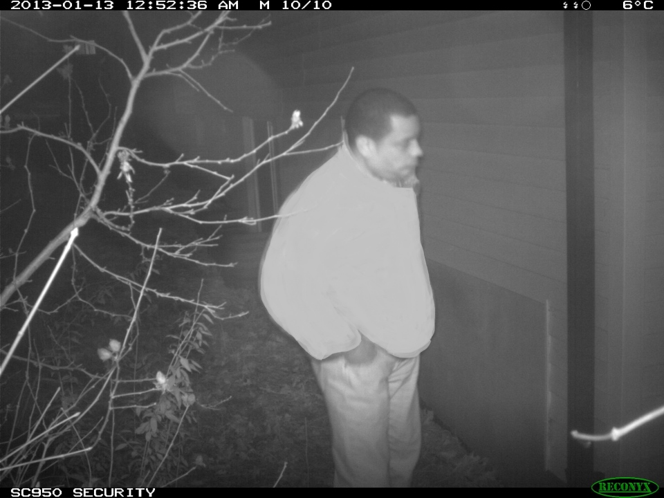 Police are trying to identify the man seen in this surveillance photo, who is believed to have been seen looking into several windows of homes on Noecker Street in Waterloo, Ont., (Courtesy Waterloo Regional Police)