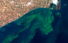 Oct. 5, 2011 photo of the Lake Erie algae bloom.