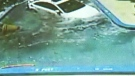 Caught on Cam: High-speed crash into swimming pool