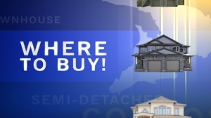 CTV Investigates: Where to Buy