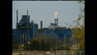 CTV Kitchener: Financial fallout from US Steel