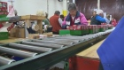 CTV Kitchener: Shoeboxes around the world