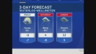 CTV Kitchener: Nov. 29 weather update