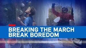 CTV Investigates: Breaking the March Break Boredom