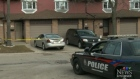 CTV Kitchener: Murder victim identified