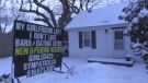 A London man has rented a sign in hopes of finding a new love in his life. (Sean Irvine / CTV London)