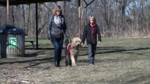 Donna Baldwin, her son Jack and service dog Jensen walk through a park on Thursday, April 14, 2016.