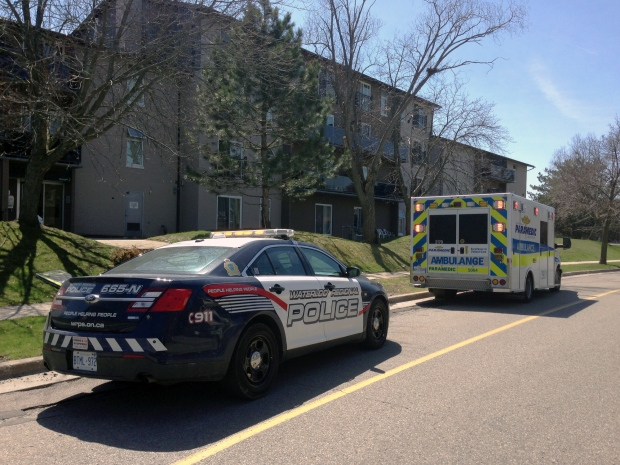 Report of stabbing brings police to kitchener apartments for Landscaping rocks windsor ontario