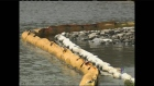 CTV Kitchener: Spill cleanup continues