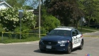 CTV Kitchener: Man fatally shot in Kitchener