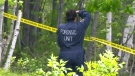 CTV Northern Ontario: Remains discovered
