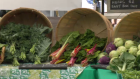 Fresh food promoted at Guelph event