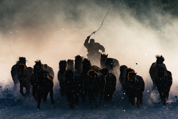<b>Grand Prize <br></b>