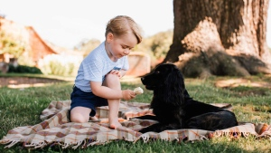 Recent but undated handout photo issued on Friday July 22, 2016 by William and Kate, the Duke and Duchess of Cambridge, of Britain's Prince George with the family dog Lupo, at Sandringham in Norfolk, England. Prince George celebrates his third birthday on July 22, 2016. (Matt Porteous/Handout via AP)