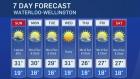 CTV Kitchener: July. 23 weather update
