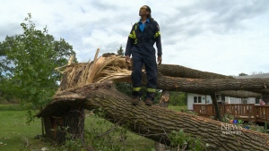 Volunteers are out in force to help Long Plain First Nation clean up after a tornado hit down in the area on Wednesday (CTV Winnipeg)