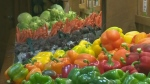 CTV Kitchener: Farmers struggle to get water crops