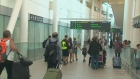 CTV Kitchener: Terror breeds travel fears