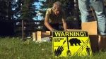 Protecting chickens, shocking bears