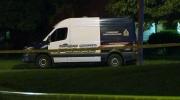 CTV Kitchener: Shooting in Kitchener