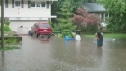 CTV Kitchener: Rains bring flooding