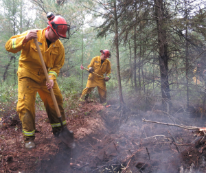 A peat fire in Ellice Swamp has been smouldering since the weekend
