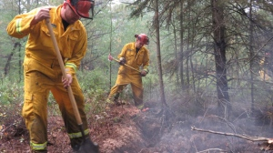 Crews have been working on extinguishing a peat fire in Perth County since the weekend