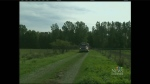 CTV Kitchener: Stubborn Milverton swamp fire
