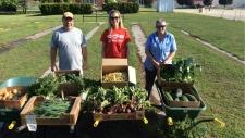 Home Hardware community garden volunteers