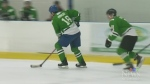 CTV Kitchener: Skating with the stars