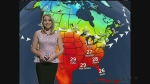 CTV Kitchener: Oct. 28 weather update