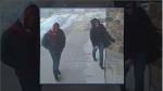 Police look to identify couple after collectibles and pot stolen in Harriston