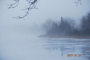 Donna O'Krafka, Puslinch Lake
