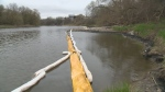 Legal action expected over Grand River oil spill