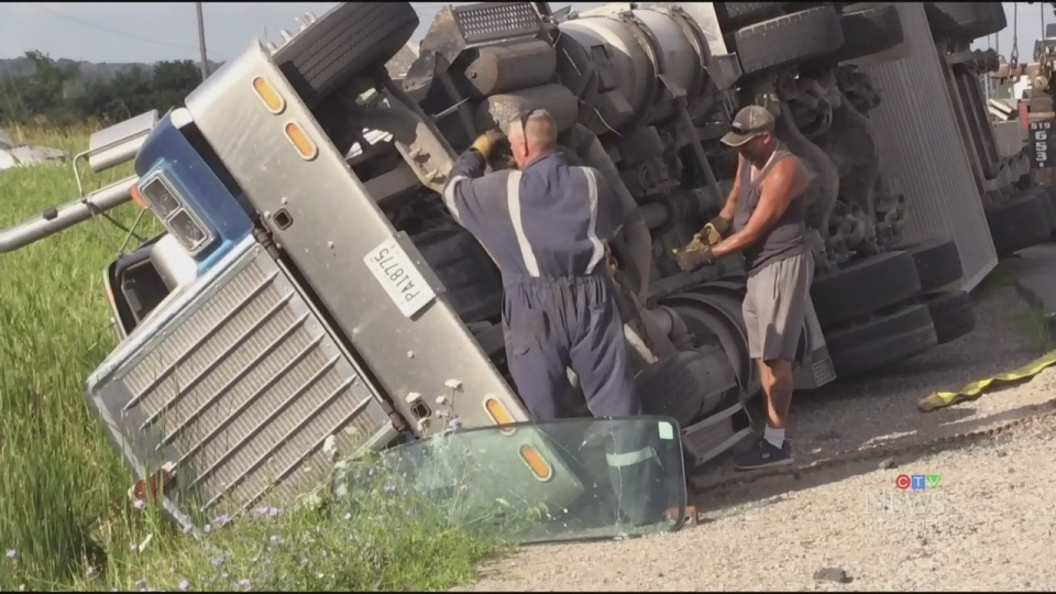 Truck carrying pigs involved in rollover