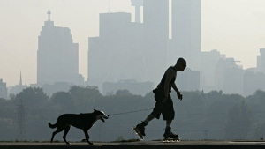 A man rollerblades with his dog as smog hangs over Toronto on Tuesday, Oct. 4, 2005. (Adrian Wyld / THE CANADIAN PRESS)