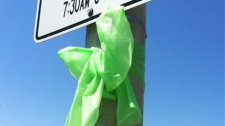 Green ribbons can be seen all across the region