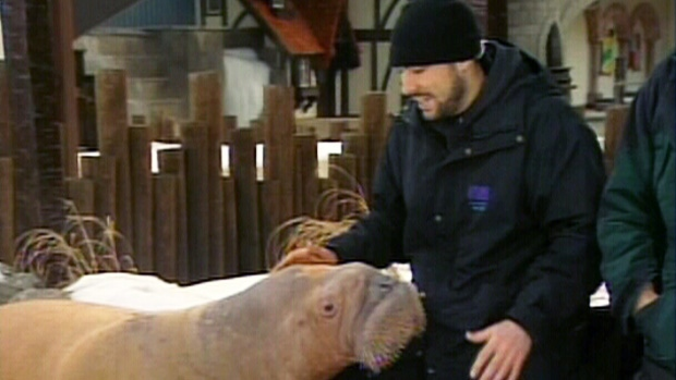 Former Marineland trainer Phil Demers is seen in this undated image.