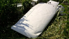 Side view of a Cessna 172 that crashed in Mapleton