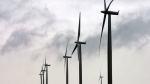 Wind turbines are shown in this file photo. (The Canadian Press/Dave Chidley)